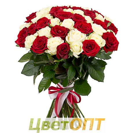 Купить цветы 25 роз доставка цветов опт в г.ангарске