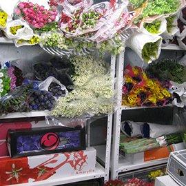 Каталог магазин цветы на машинной 11