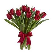 Купить тюльпаны в екб не дорого белорусские розы минск купить