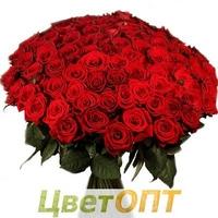 Радужные розы купить екатеринбург
